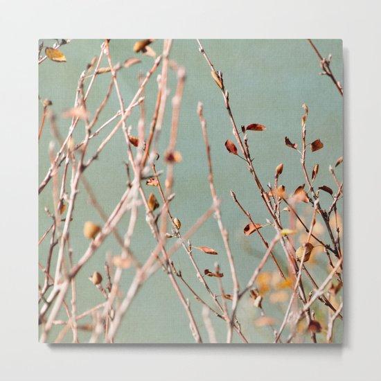 autumn twigs Metal Print