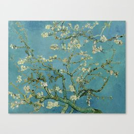 Vincent Van Gogh - Almond Blossoms Canvas Print