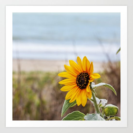 Sunflower near ocean Art Print