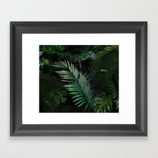 ALORAH Framed Art Print