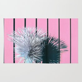 Yucca Plant in Front of Striped Pink Wall Rug