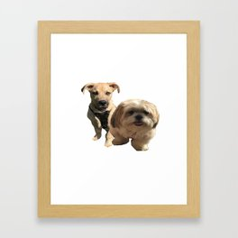 dgs Framed Art Print