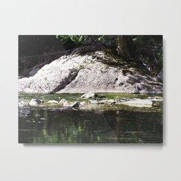 River's Edge Metal Print