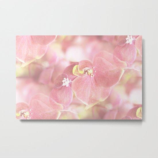 Some Soft Pink Flowers Metal Print