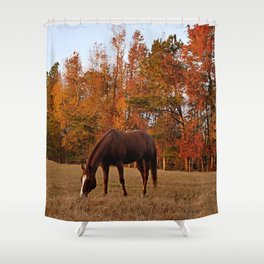 Horse Fall Days of Grazing Shower Curtain