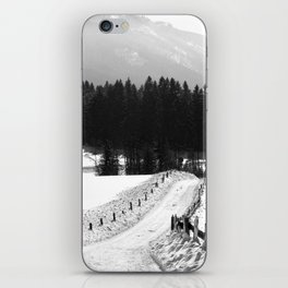 Garmisher Landscape  iPhone Skin