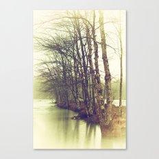 Natures Winter Slumber Canvas Print