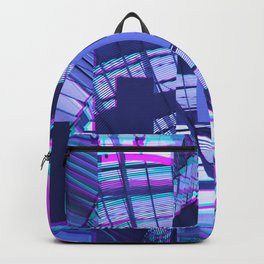 Divided Backpack