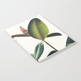 Ficus Elastica #8 Notebook