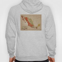 Vintage Geological Map of Mexico (1921) Hoody