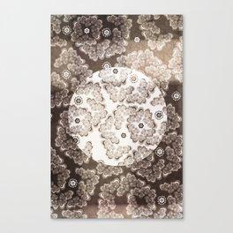 XV-IV-XIV Floral  Canvas Print
