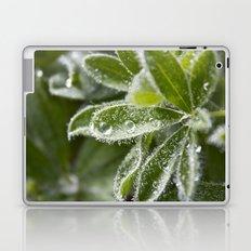 Morning Dew II Laptop & iPad Skin