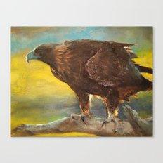 Golden Eagle (Aquila chrysaetos) Canvas Print