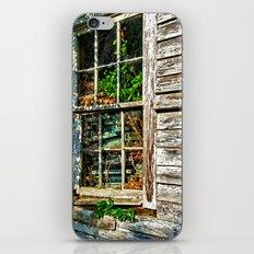 Overgrown Behind the Window iPhone & iPod Skin