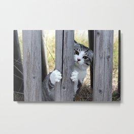 Cat in hiding Metal Print