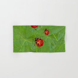 RED LADY BUGS ON GREEN LEAVES DESIGN ART Hand & Bath Towel