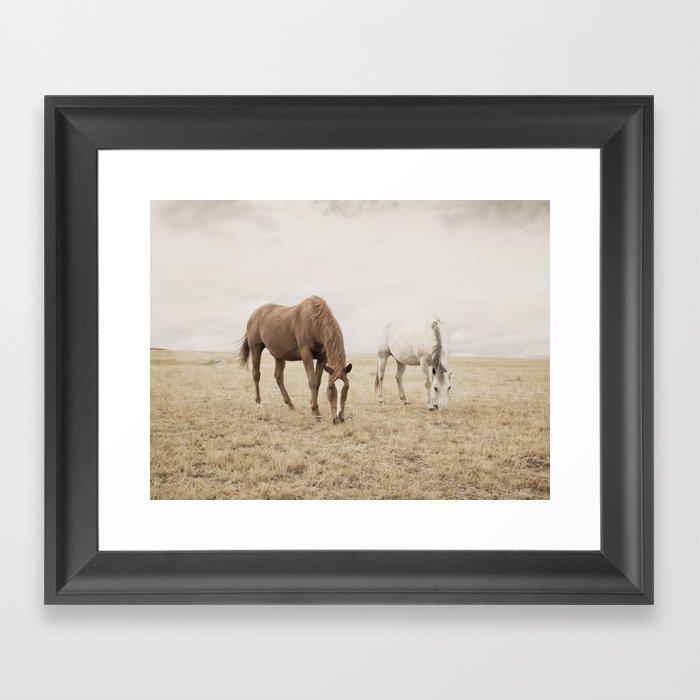 Open Country Horse Photograph Gerahmter Kunstdruck