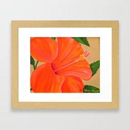 Coral Delight Framed Art Print