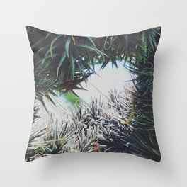 Enclosed Throw Pillow