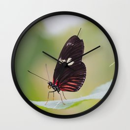 Postman butterfly Wall Clock