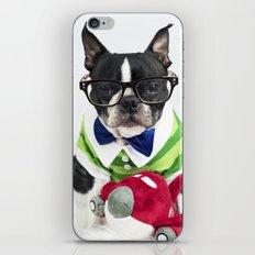 Boston Terrier Nerd iPhone & iPod Skin