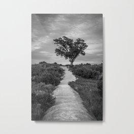 Windswept Tree at Fort Fisher NC -- Black and White Coastal Landscape Metal Print