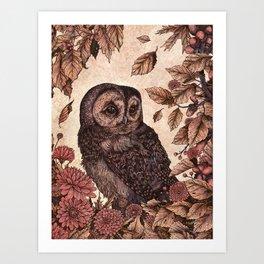 Tawny Owl Pink Art Print