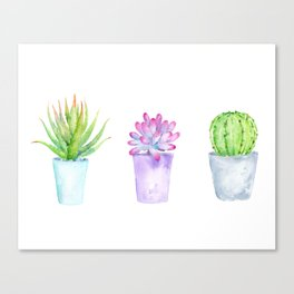 Watercolor Succulent Plants in Pots Canvas Print