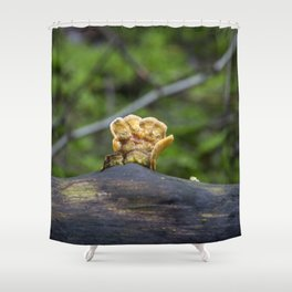 Fungal remains Shower Curtain