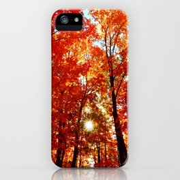 Sun in the Trees iPhone Case