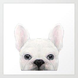 French bulldog white Dog illustration original painting print Art Print
