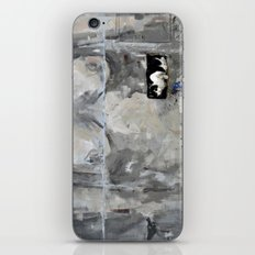 The cat and the nude iPhone & iPod Skin