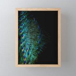 Peacock Details Framed Mini Art Print
