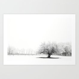 The Winter Storm Art Print