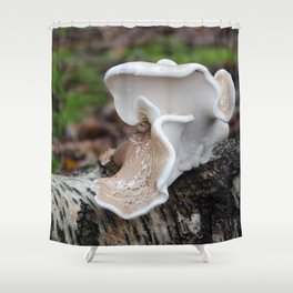 Birch Polypore Shower Curtain