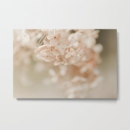 Softly Fading Metal Print