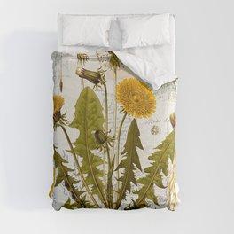 Vintage Dandelion on Antique Postcards Comforters
