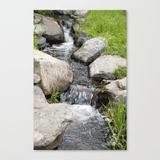 Water Stream Canvas Print