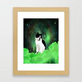 Gypsy Da Fleuky Cat and the Kitty Emerald Night Framed Art Print