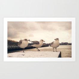 One legged friend - Hoboken, NJ Art Print