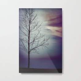Have You Ever Metal Print
