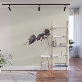 Ant with a Cowboy Hat Wall Mural