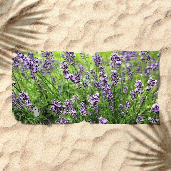 Lavender Plant Beach Towel
