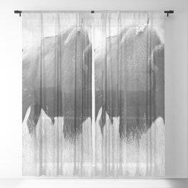Bison - Monochrome Sheer Curtain