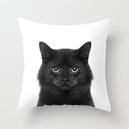 Black Cat, Home Pet, Meow, Black Animal, Anuimal Portrait, Animal Photography Throw Pillow