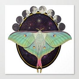 Indian moon Moth Canvas Print