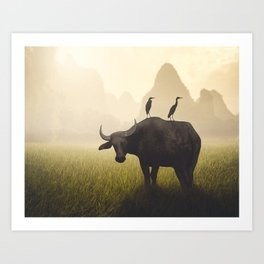 Water Buffalo And Egrets Art Print