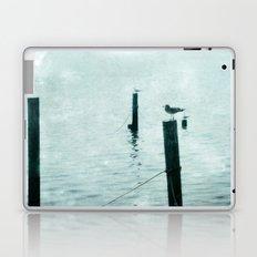 Four Seagulls Laptop & iPad Skin