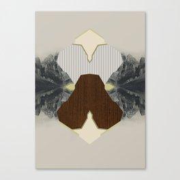 48 Canvas Print