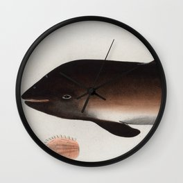 Vintage Illustration of a Dolphin (1785) Wall Clock